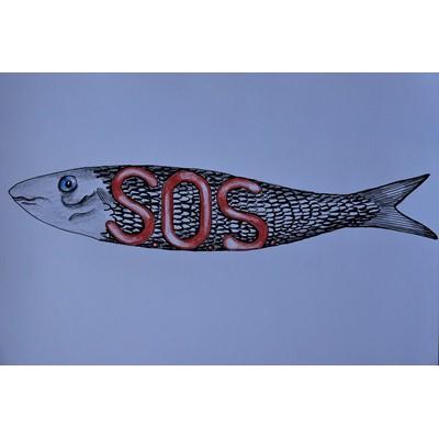 S.O.S. sardinha