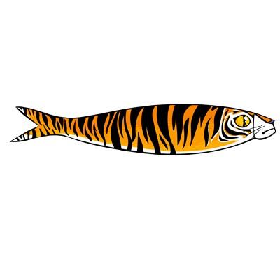 sardinha_tigre