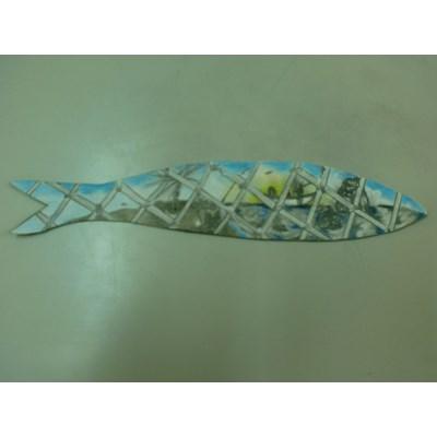 Visão de uma sardinha Pescada