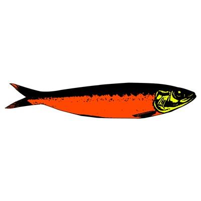 pop sardine