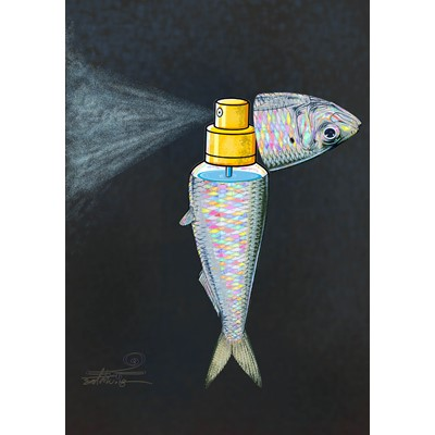 Sardine fish perfume