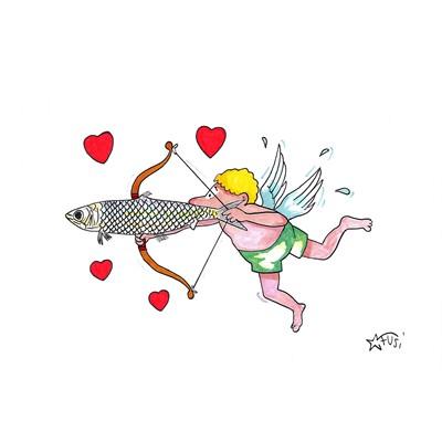 sardina my love
