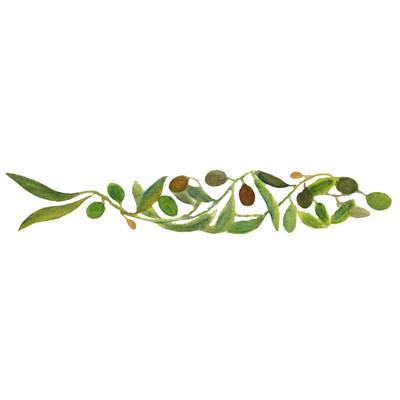 Olive Sardine