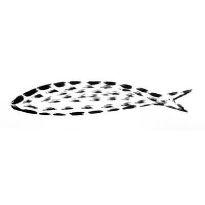 a hairy sardinha
